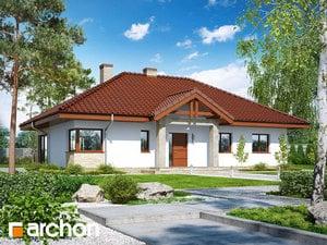 Dom w santolinach 2