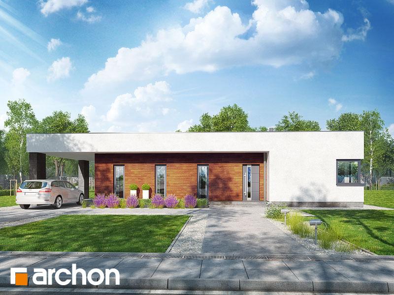 Dom w plumeriach - wizualizacja 1