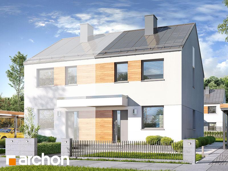 Dom w riveach (B) - wizualizacja 1
